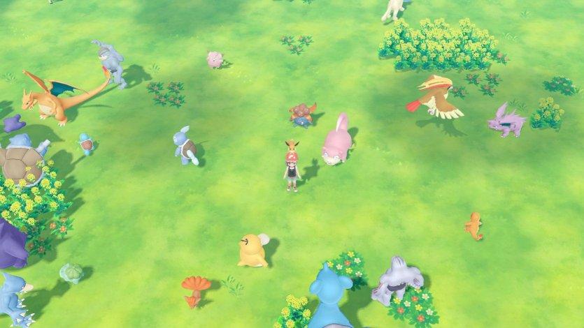 Pokemon Let S Go Pikachu Und Pokemon Let S Go Evoli Verbinde